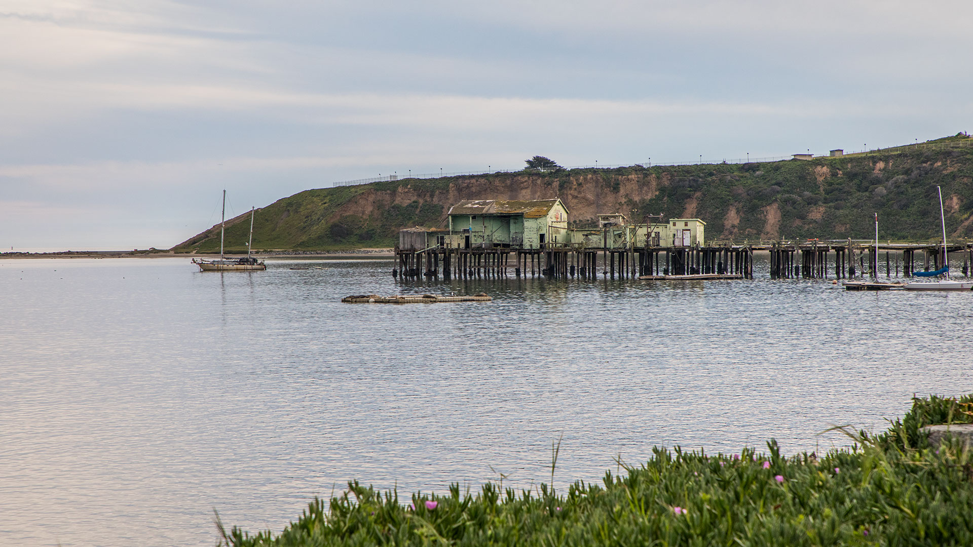 Romeo Pier - Pillar Point Harbor